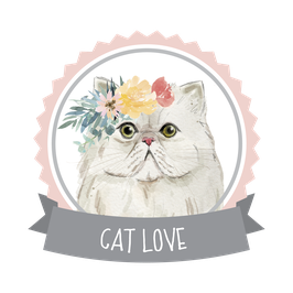 CAT LOVE BOX