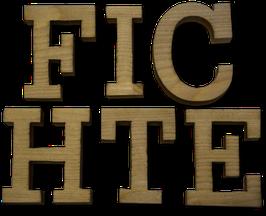 Holzbuchstabe aus Fichte