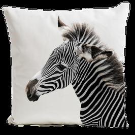 Zebra - White