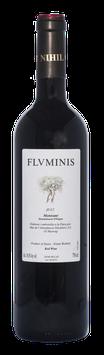 Flvminis 2017