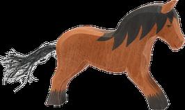 Kylmäverinen hevonen