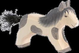 Shetland Pony II