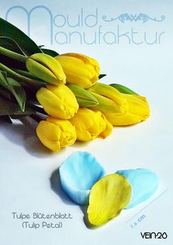 Tulpe Blütenblatt (Tulip Petal)