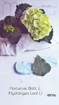 Hortensie Blatt L (Hydrangea Leaf L)