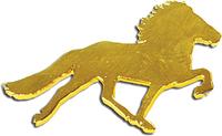 Pferde-Pins