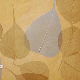 """echte Blatt Tapete """"Fukuro"""", beige, grau"""