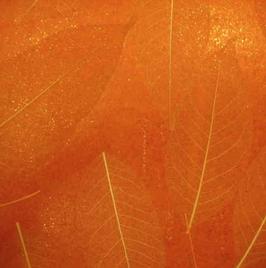 """echte Blatt Tapete """"Fuki"""", orange, glitzer"""