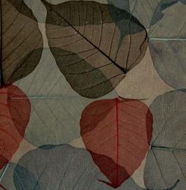 """echte Blatt Tapete """"Ichigo"""", beige, rot, olive"""