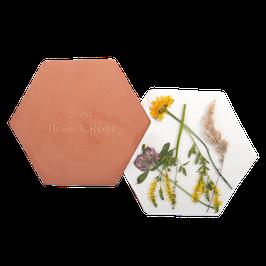 Magnetron Bloemen- en kruidenpers