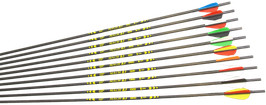 "X-Line ""MACH 3.1"" Carbonpfeil"