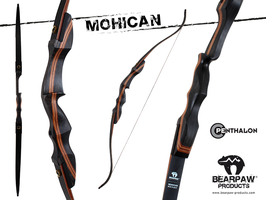 Take Down Recurve Mohican