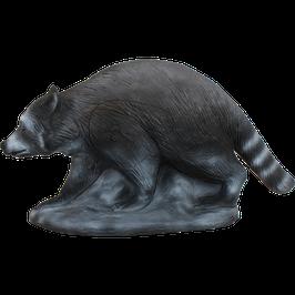 Longlife Waschbär laufend