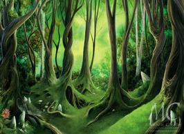 La Forêt des Légendes