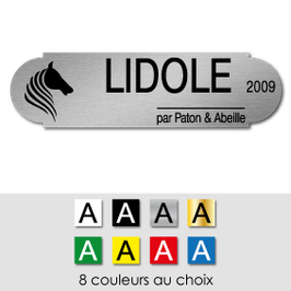 Plaque de box