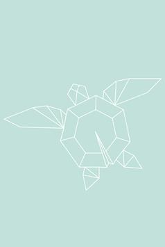 Frini, die Schildkröte