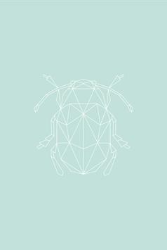 Blatt-Käfer
