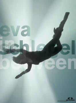 Schlegel (Eva Schlegel - in between / MAK) 2011.