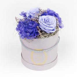 Purple Garden (M)
