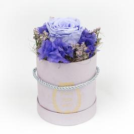 Purple Garden (S)