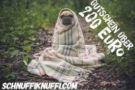 Geschenkgutschein Schnuffiknuffi.com über 200 Euro