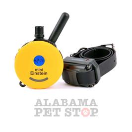 Einstein Mini Remote Dog Trainer