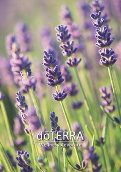 dōTERRA Intro Broschüren (Lavendelmotiv)