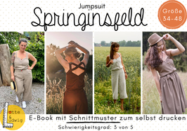 E-Book Springinsfeld