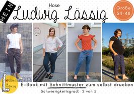 E-Book Mein Ludwig Lässig