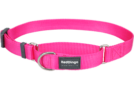 Red Dingo Martingale Dog Collar Plain Hot Pink