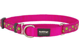 Red Dingo Martingale Dog Collar Lime Green Stars On Hot Pink