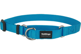 Red Dingo Martingale Dog Collar Plain Turquoise