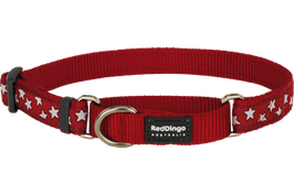 Red Dingo Martingale Dog Collar White Stars On Red
