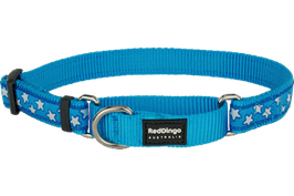 Red Dingo Martingale Dog Collar White Stars On Turquoise
