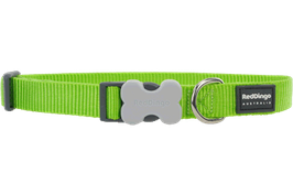 Red Dingo Dog/Puppy Collar Plain Lime Green