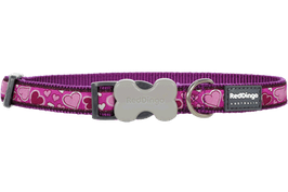 Red Dingo Dog/Puppy Collar Breezy Love Purple