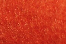 pannolenci 45x50cm-col. 85 arancio