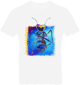 T-Shirt Herren weiß / kurzarm