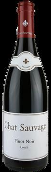 2013 Chat Sauvage, Pinot Noir, Lorch