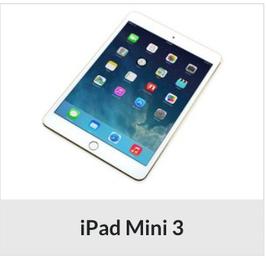 iPad mini 3 Displayreparatur