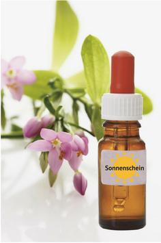 Bachblüten-Tropfen SONNENSCHEIN 20 ml