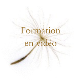 "Formation ""Culture des Sens"" N° 1"