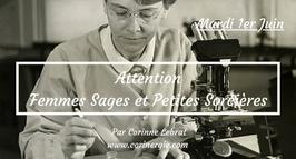 """210601 - Attention """"Femmes sages et Petites Sorcières"""""""