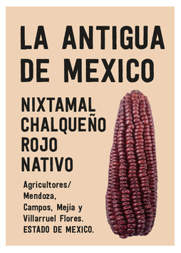 TORTILLAS  DE NIXTAMAL DE MAIZ CHALQUEÑO ROJO ORGÁNICO. ( MILPA ALTA,EDO MEX) MEXICO 500 grs