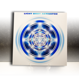 Light Body Activator Plate