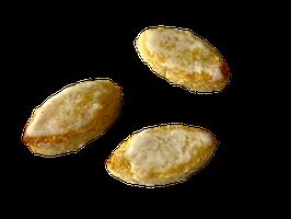 Zitronenkonfekt