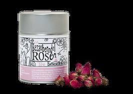 Die bezaubernde Rose