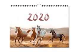 Anita Girlietainment Wandkalender 2020 LIMITED EDITION