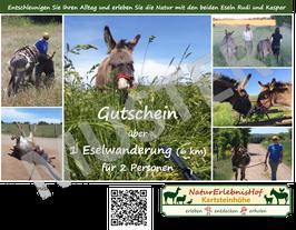 Gutschein über eine Eselwanderung