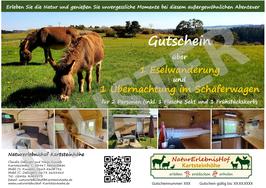 Gutschein über eine Eselwanderung und 1-2 Übernachtungen im Schäferwagen