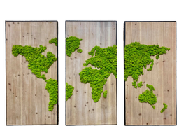 TRIPTYQUE - Map Monde